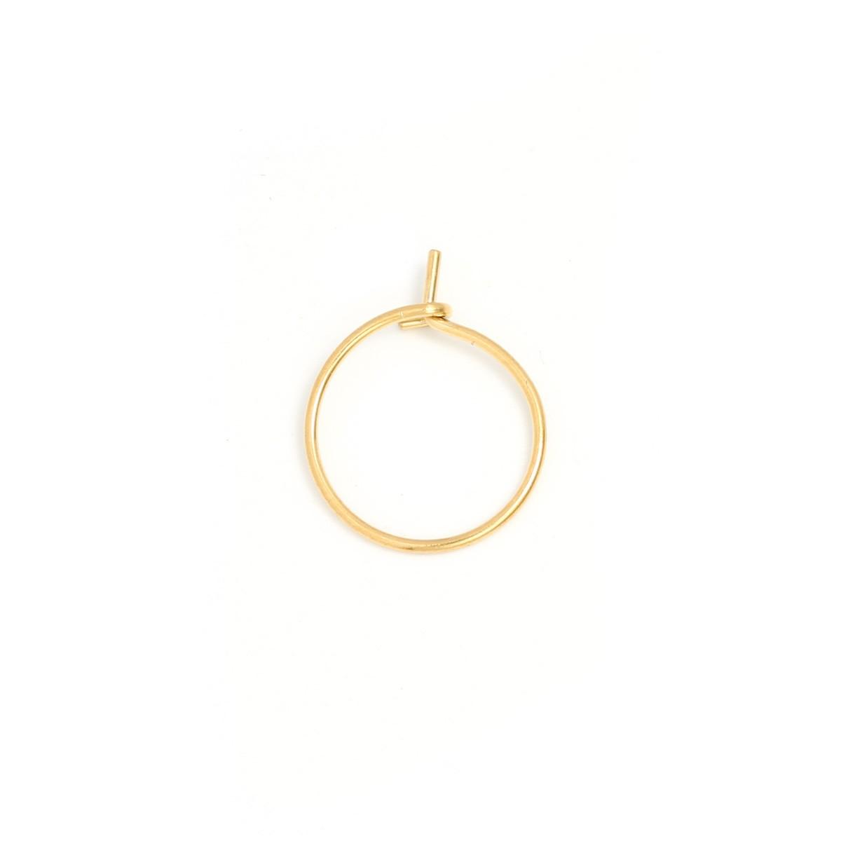 oorbellen-kleine-ring-stainless-steel-25mm-per-paar