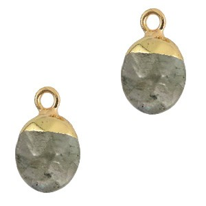 Natuursteen hanger fossil grey gold