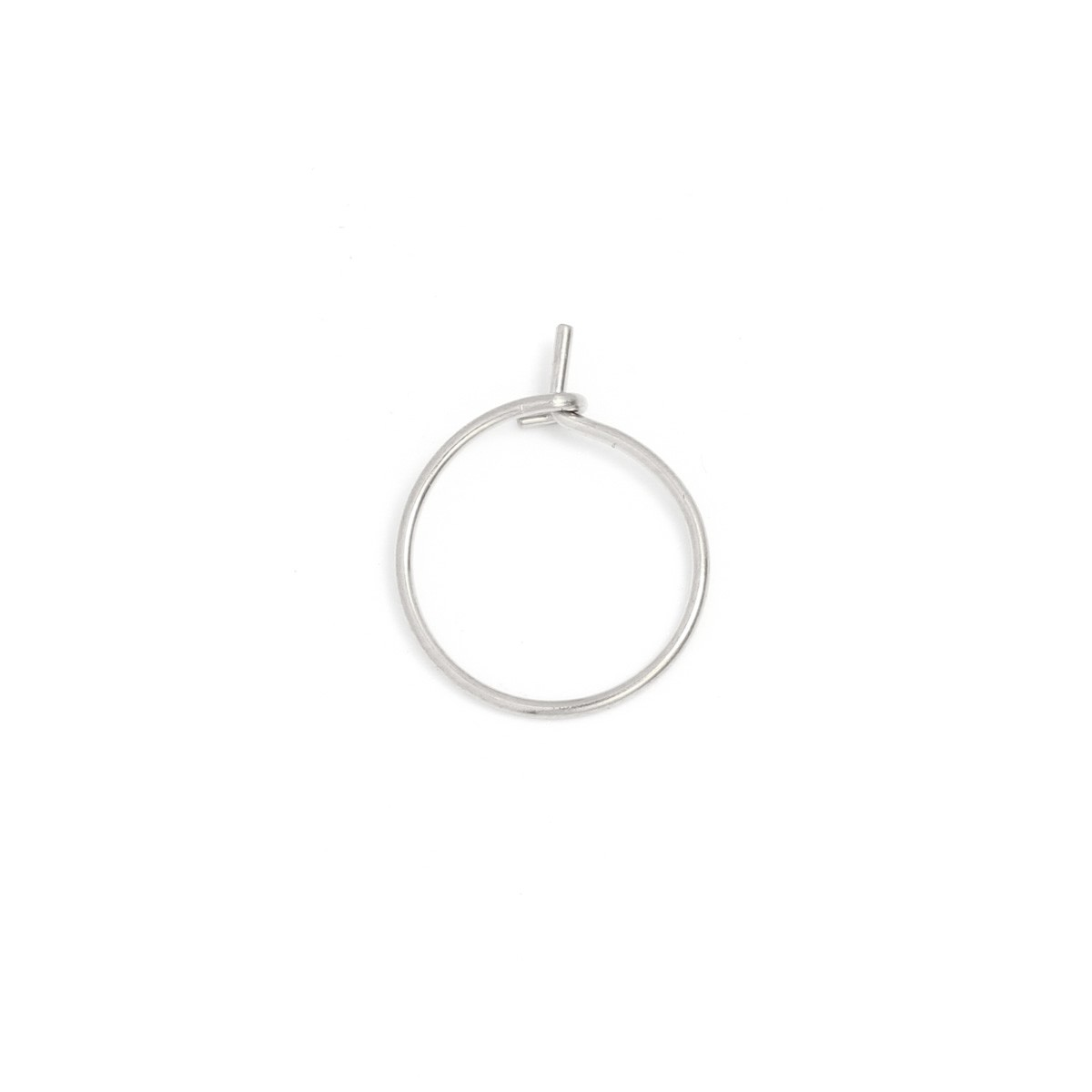 oorbellen-kleine-ring-stainless-steel-zilver-25mm-per-paar