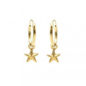 Karma oorbellen hoops symbols polestar goud