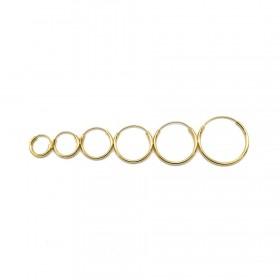 oorringen-creolen-maat-8mm-t-m-20mm-925-sterling-zilver-goldplated-per-paar-2