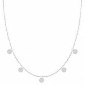 Stainless steel ketting coin small zilver 55cm
