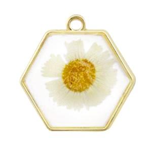 Bedel gedroogde bloemetjes hexagon goud white 28mm
