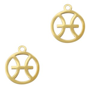 Bedel / hanger sterrenbeeld anker goud stainless steel 13x11mm (Ø1.5mm)