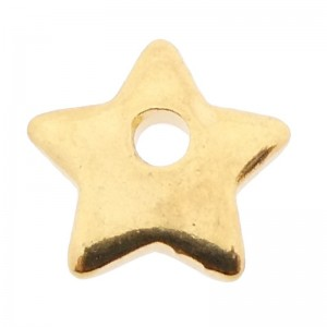 Bedel star stainless steel goud 6x6mm