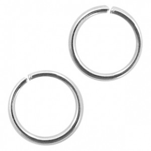 Buigring stainless steel 6mm zilver (per stuk)