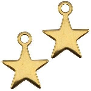 DQ bedel ster goud 15x12mm