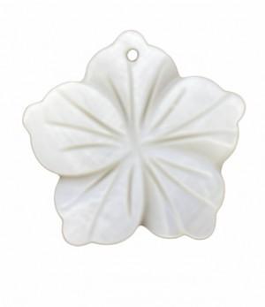 Schelp bedel bloem creme white 22mm per stuk