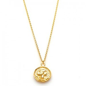 Karma ketting coin elizabeth 925 sterling zilver goldplated 50-57cm