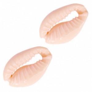 Kauri schelp ca. 17x12 mm coral peach