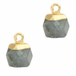 Natuursteen hangers hexagon fossil grey goud