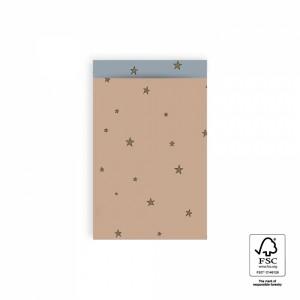 Papieren cadeauzakjes / inpakzakjes stars duo warm pink – ice blue 12x19cm (per 5 stuks)