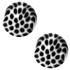 Polaris elements cabochon plat 12mm leopard bianco white