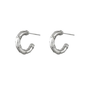 Stainless steel oorbellen / creolen india 16mm zilver per paar
