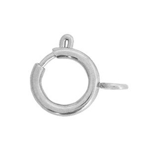 Slotje rond stainless steel 10x12mm zilver (per stuk)